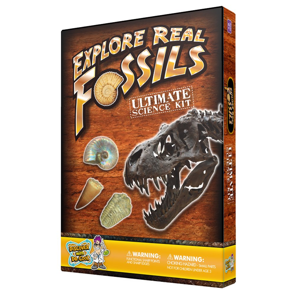 Ultimate Fossil Kit - Collect 15 Rare Fossil Specimens! Discover with Dr. Cool UFOSSIL