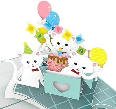 Amazon.com: Colorpop Tarjetas gatos cumpleaños fiesta ...