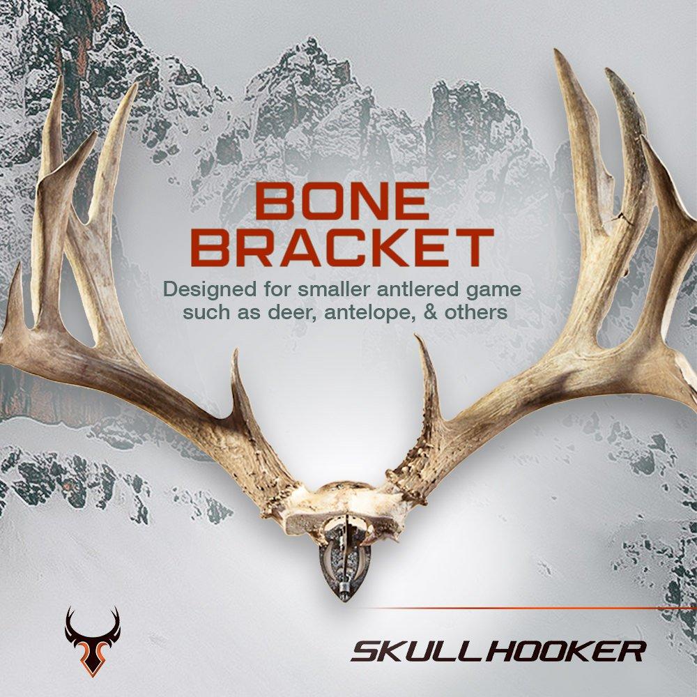 XXL Bone Bracket European Trophy Mount by Skull Hooker Perfect for Large Skull