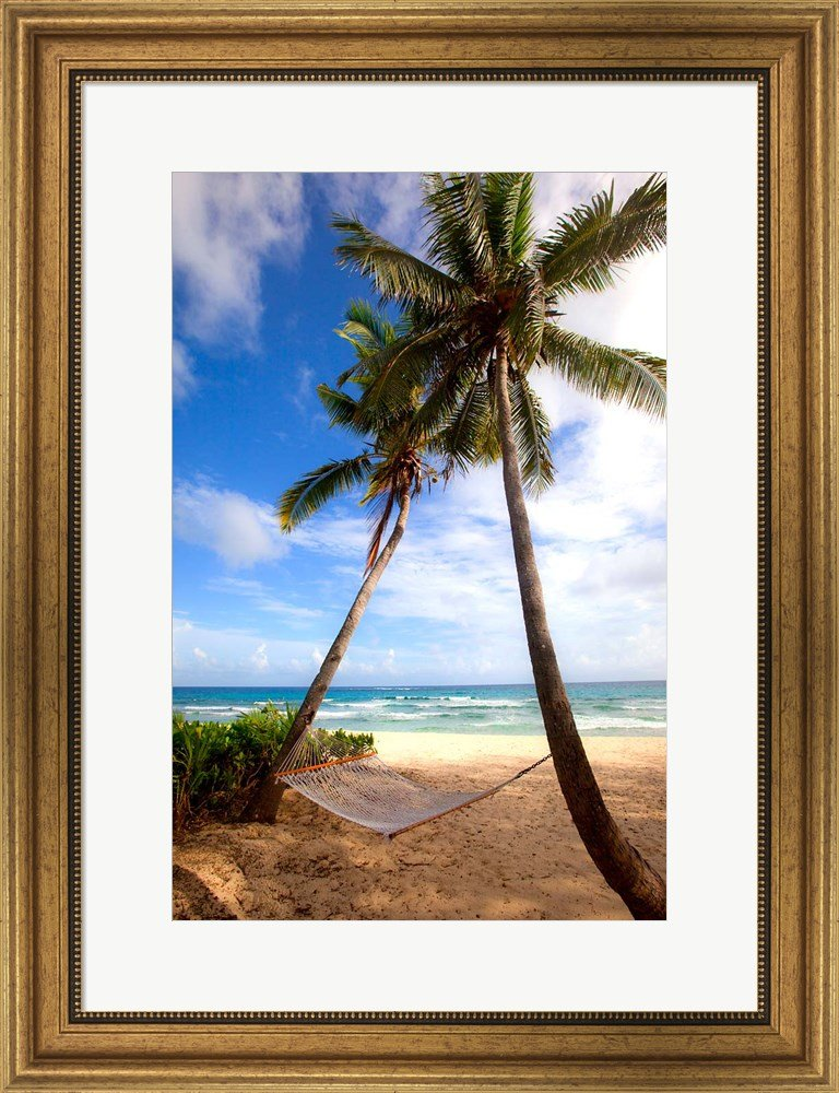 Yasawa Island Resort and Spa on Yasawa Islands, Fiji by Douglas Peebles / Danita Delimont Framed Art Print Wall Picture, Wide Gold Frame, 21 x 27 inches