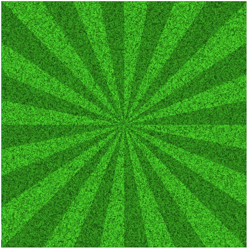 Patricks Day Photography Background Lucky Irish Shamrock Green Four-Leaf Clover Deep and Light Green Festival Celebration Party Backdrop Photo Studio Portraits 10x10ft Backdrop Happy St
