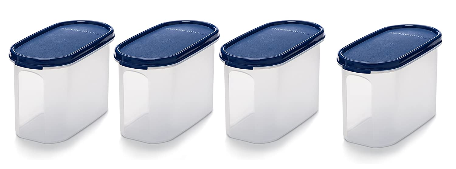 Signoraware Oval Plastic Container Set, Set of 4, 1.1 Litres, Blue