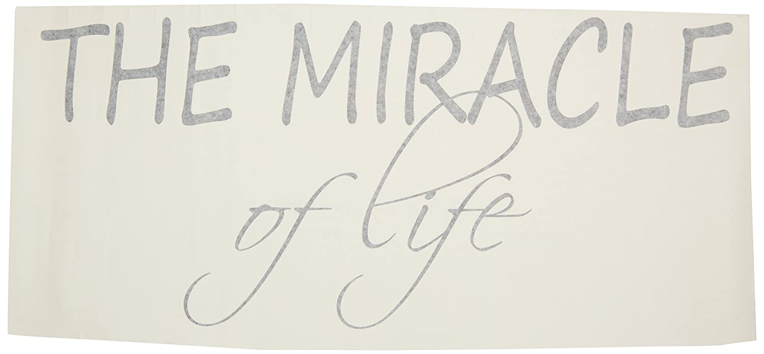 The Miracle of Life Pop Decors WL-0160-Va Inspirational Quote Wall Decal