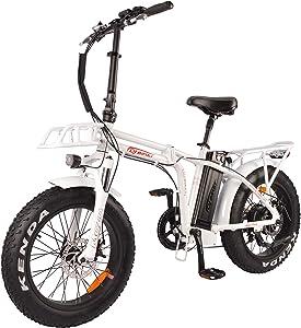 DJ Folding Bike 750W 48V 13Ah Power Electric Bicycle