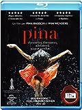 Pina(2D+3D)