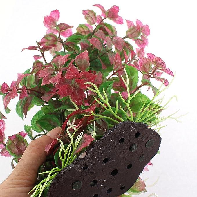 Amazon.com : eDealMax Planta cerámica plástico Base acuario de agua de la hierba Decoración, púrpura/Verde : Pet Supplies