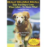 Really Reliable Recall
