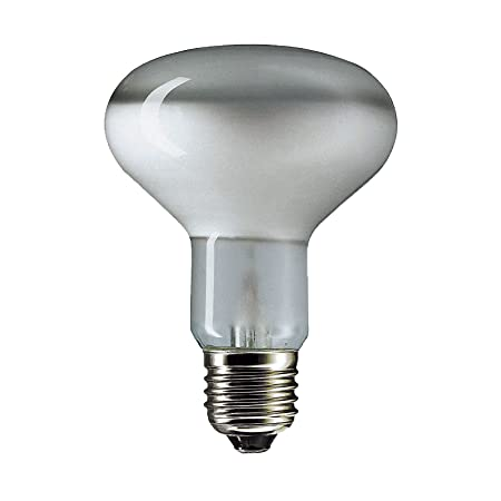 10 X 100w ES,E27 R80 Spotlight Bulb