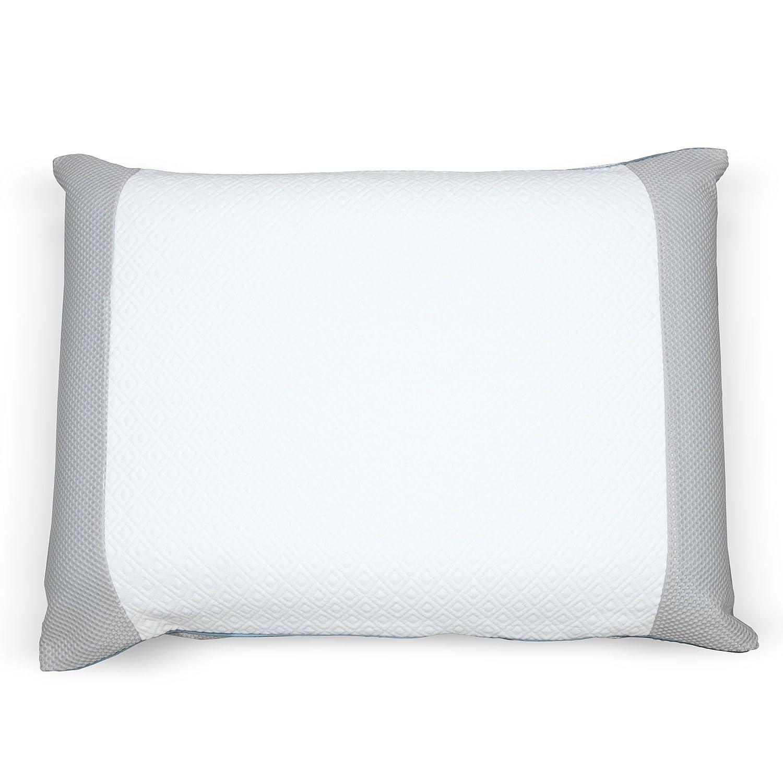 Fashion Bed Group QG0175 Sleep Plush Comfort Foam Pillow - Standard & Queen Size B01MCS8QE9