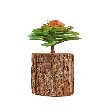magrace handgefertigt aus Holz Pflanze Wand hängen montiert Vase ...