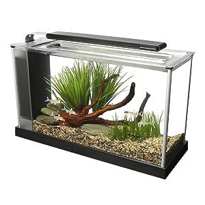 Fluval Spec V Aquarium (5-Gallon)