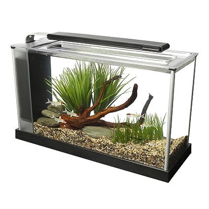Amazon Com Fluval Spec V Aquarium Kit 5 Gallon Black Aquarium