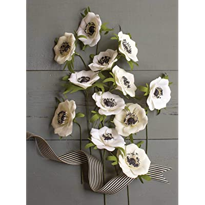 Creativity Street LG40002 Crepe Paper Flower Kit-Anemones: Arts, Crafts & Sewing