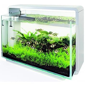Superfish Design Aquarium Fur Zu Hause 80 Weiss Amazon De Haustier