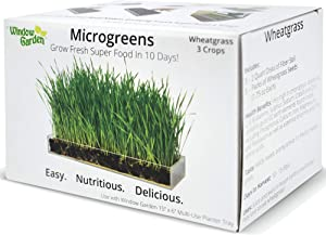 "Window Garden Microgreen Organic Wheatgrass 3 Pack Refill – Use with Grow n Serve Kit, Multi-Use 15"" x 6"" Planter Tray, Pre-Measured Soil + Seed. Easy and Convenient, Sprout 3 Crops of Superfood."