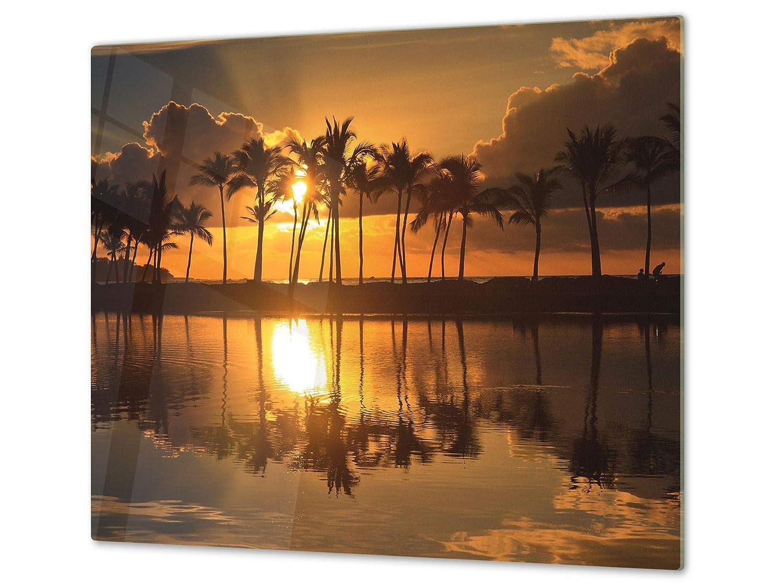Couvre-cuisini/ère et prot/ège-plain de travail en verre r/ésistant ou DEUX PI/ÈCES ; D08 S/érie Nature: Pie UNE PI/ÈCE 30x52 cm chacune Planche /à d/écouper en verre tremp/é 60x52 cm