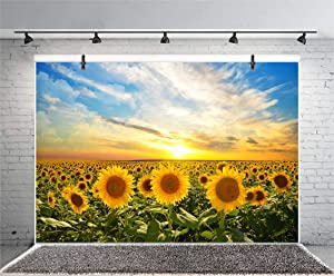 DORCEV 5x4ft Sunflower Backdrop Autumn Harvest Party Birthday Party Wedding Ceremony Party Background Sunrise Blue Sky Sunflowers Garden Room Wallpaper Kids Adult Photo Studio Props
