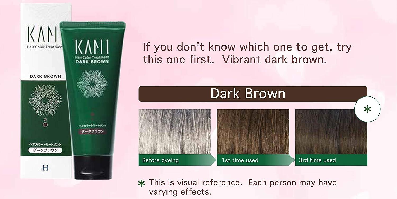 Amazon.com : Premium Grey Hair Color Treatment - Natural ...