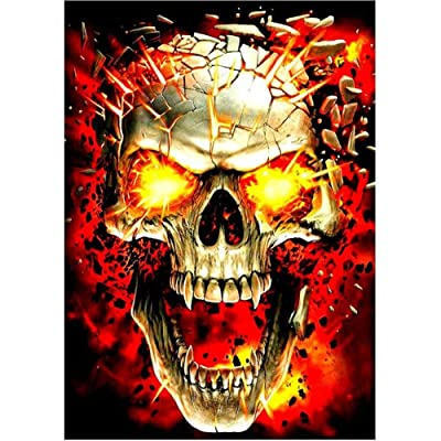 DIY 5D Diamond Painting by Number Kits,Rhinestone Diamond Embroidery Paintings Pictures for Home Wall Decor Flame Skull 11.8x15.7in 1 Pack by Loxfir: Arts, Crafts & Sewing