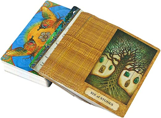 Dynamovolition Juego de Mesa Tarot Crisálida Tarot Simple de dominar Vida Inspirada única Da Cartas Un Buen resbalón Multicolor 1 Caja - Multicolor: Amazon.es: Hogar