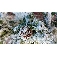 The Original, Self-Adhesive, Professional Grade Snow Flock. Iridescent Flakes, and Pure White Color for Artificial Trees…