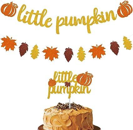First Birthday Baby Shower Pumpkin Garland Photo Prop Fall Party