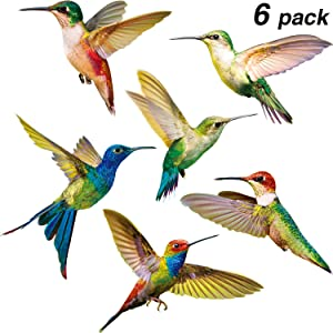 6 Pieces Large Size Hummingbird Window Clings Anti-Collision Window Clings Decals to Prevent Bird Strikes on Window Glass Non Adhesive Vinyl Cling Hummingbird Stickers