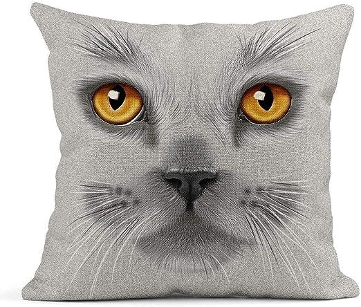 Kinhevao Cojín Naranja Gris Retrato de Gato británico Gris Ojos ...