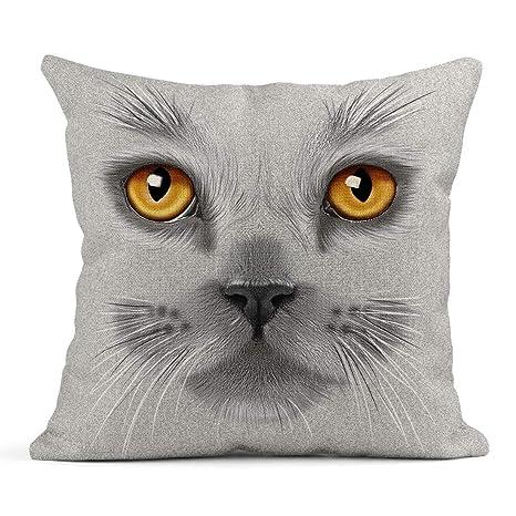 Kinhevao Cojín Naranja Gris Retrato de Gato británico Gris ...