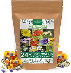 Wildflower Seeds | Bulk Mix of 24 Different Varieties of Non-GMO Wildflower Seeds 3oz | Bee and Butterfly Garden Seeds | Colorful Perennial Flower Seeds | American Wildflower Seeds for Your Garden