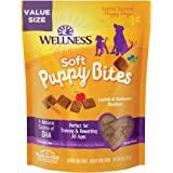 Wellness Natural Pet Food Grain-Free Crunchy Puppy Bites Chicken & Carrots Recipe Dog Treats