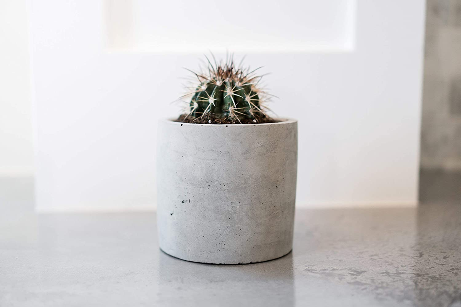 Concrete Succulent Pot | Plant | Indoor | Outdoor | Minimalist | Modern | Cactus Planter | Medium