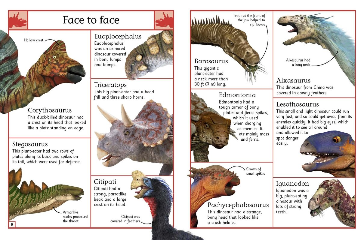 Dk Natural History Pdf