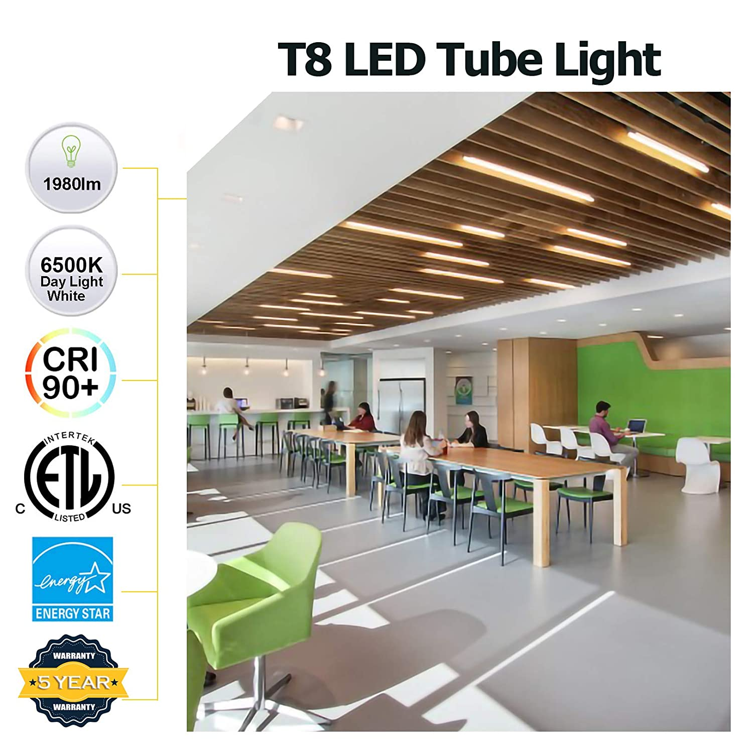 12 Pack WDG T8 Led Bulbs,5FT 24W Beer Cooler Lamp with G13 Bi-pin Base,ETL Listed Day Light White 6500K Dual-end Powered 5 Tube Light,Replacements for T10 T12 Fluorescent Bulb Frosty Cover