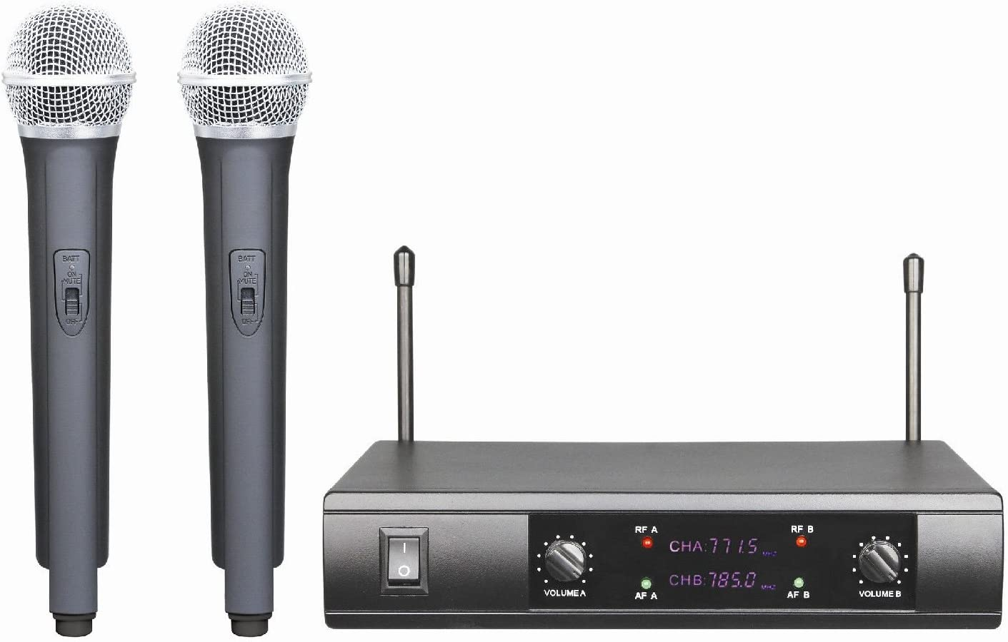 2 Channel Dual Wireless Microphone System