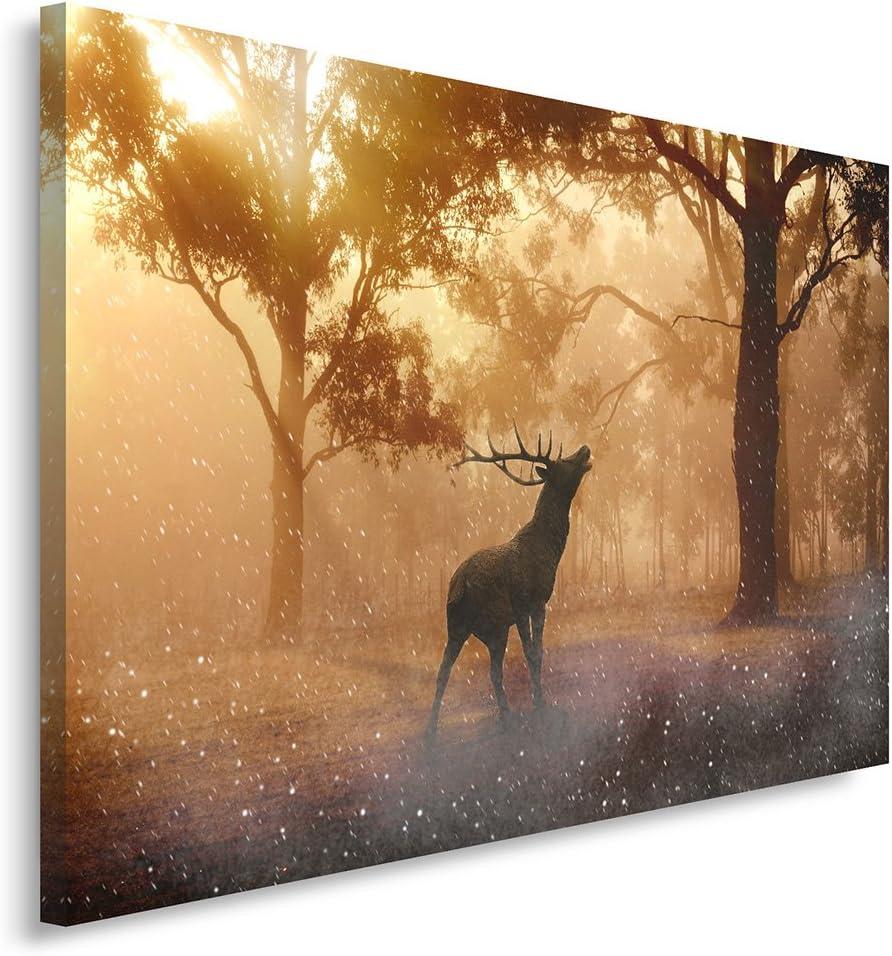 Canvas 30x40 cm Feeby Frames Tableau Deco Nature FOR/ÊT Cornes Animaux Tableau imprim/é XXL CERF Tableau imprim/é sur Toile