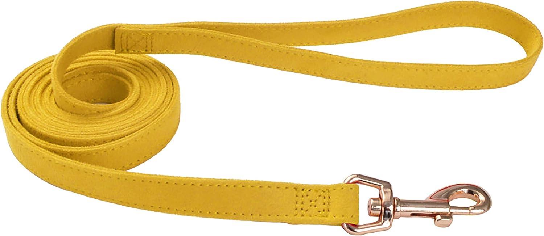 Vintage Yellow with Flower 6 Coastal Pet 5//8 Accent Microfiber Dog Leash