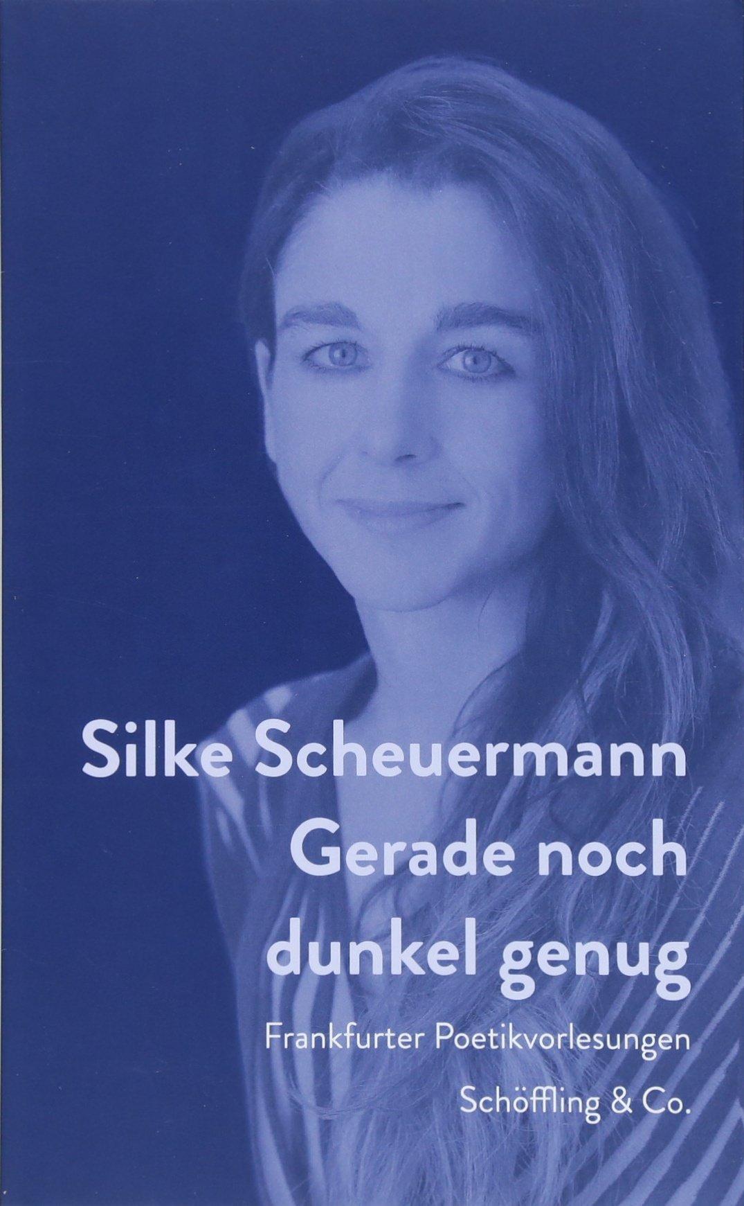 Gerade noch dunkel genug: Frankfurter Poetikvorlesungen