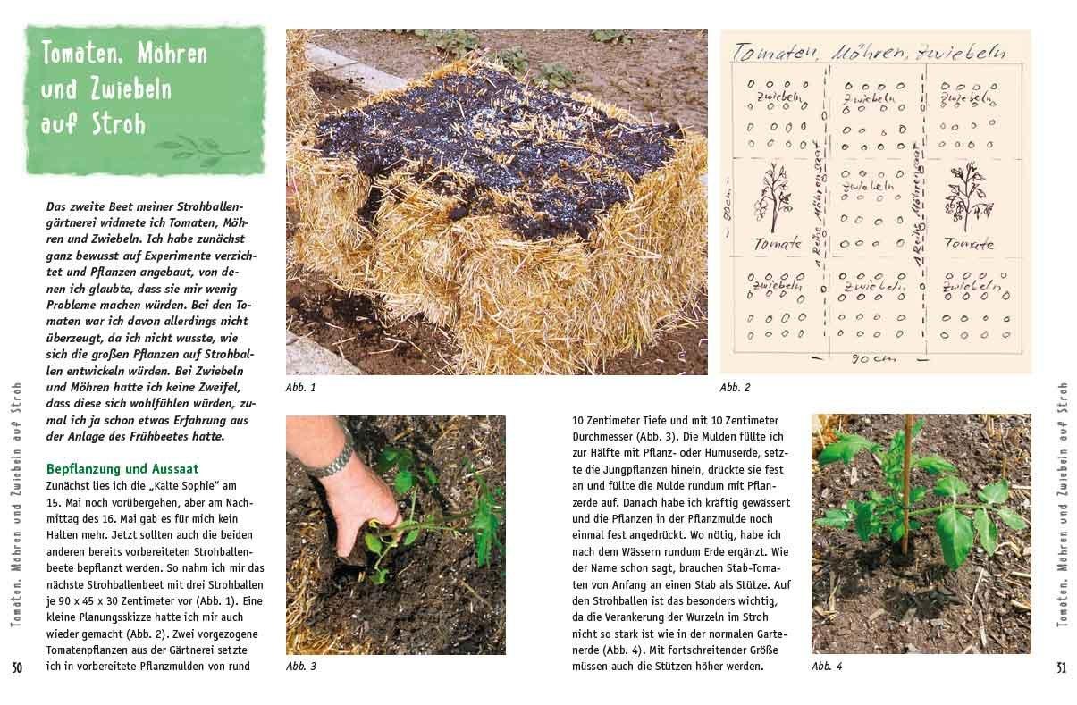 Besser Gärtnern Mit Strohballen: Einfach, Preiswert, Pflegeleicht ... Gaertnern Auf Strohballen Gemuese Pflanzen