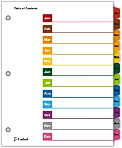 TOPS Business Forms Cardinal OneStep Index System, 12-Tab, Monthly, Multi-Color, 1 Set (60318CB)