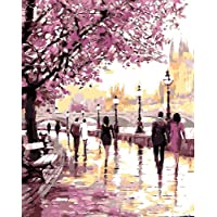 Bigie DIY Oil Painting Paint by Number Kit with Scenery Peaple 16x20inch (Frameless, Cherry Blossoms Park)
