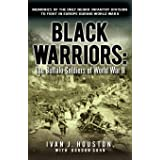 Black Warriors: The Buffalo Soldiers of World War II Memories of the Only Negro Infantry Division to Fight in Europe During W