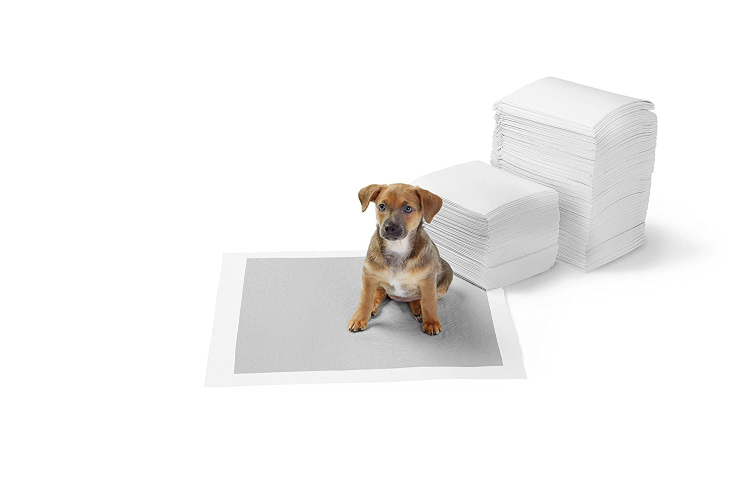 50 Count Extra-Large Basics Carbon Pet Training and Puppy Pads