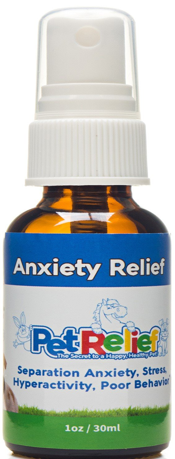 Dog Anxiety Relief - Soothes Dogs With Separation Anxiety - Lifetime Replacem