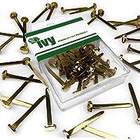 Ivy Stationery - 30mm Brassed Split Pin Fastener - Paper Fasteners - Pack of 30 - 8mm Head