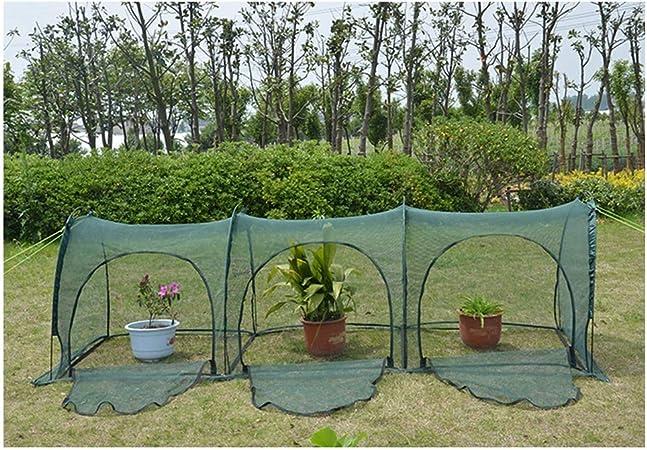 Invernaderos Jardin Pequeño Invernadero Interior Túnel De Malla Suculentas Hanabusa Anti-pájaro Portátil Respirable Tejido De PE 2 Colores 2 Tamaños, 2 Estilos BAI Yin: Amazon.es: Hogar