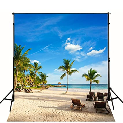 Fine Amazon Com 10X10 Ft Palm Tree Beach Photo Backdrop Cloud Inzonedesignstudio Interior Chair Design Inzonedesignstudiocom