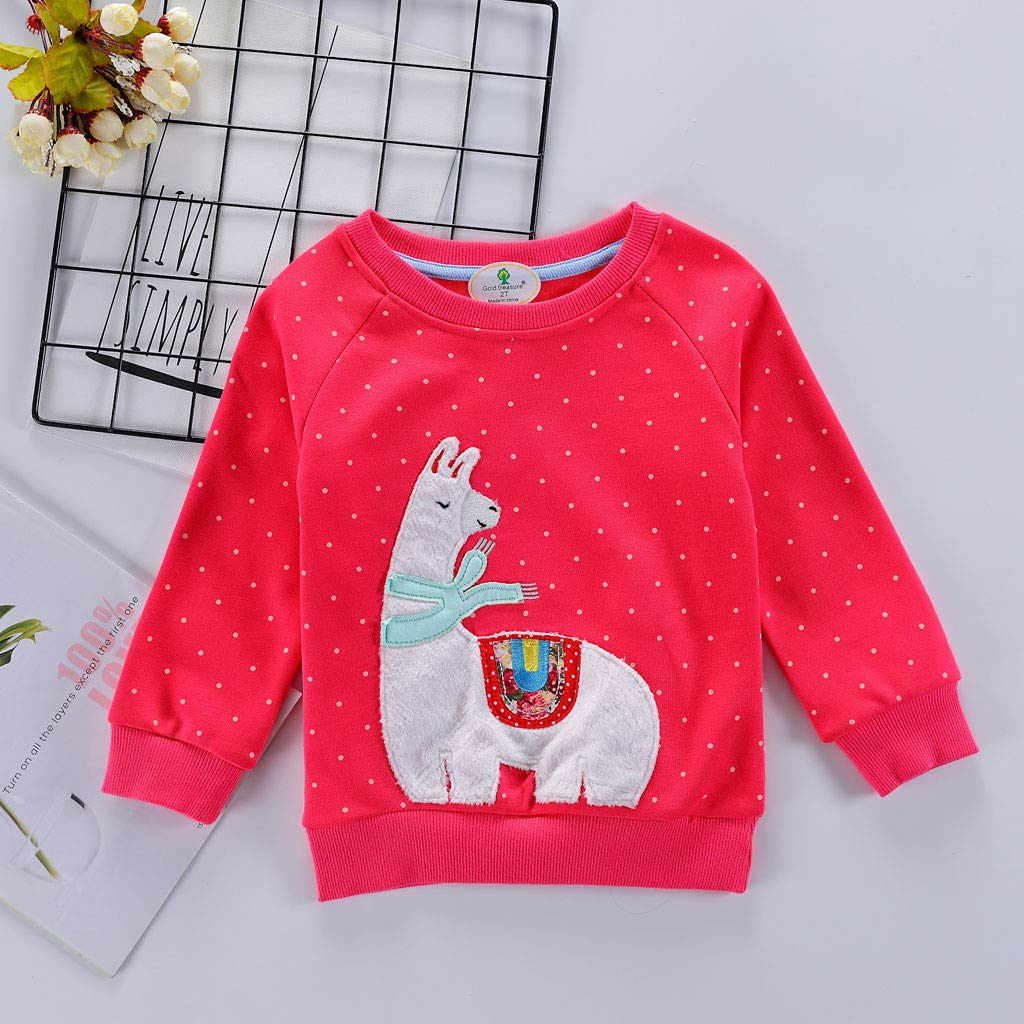 Baulody Toddler Baby Kid Girl Boy Embroidery Animal Rabbit Cat Sweatshirt Tops Clothes 2-7T