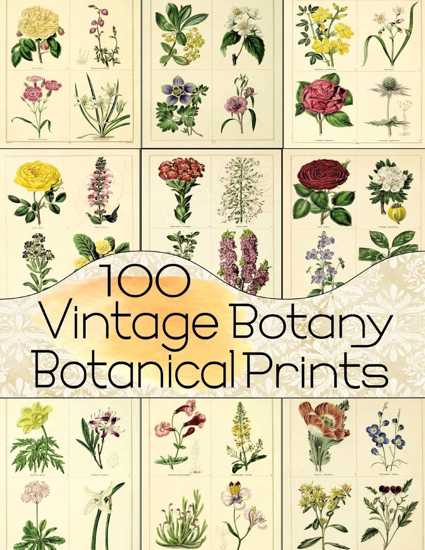 100 Vintage Botany Botanical Prints (Floral Ephemera Series