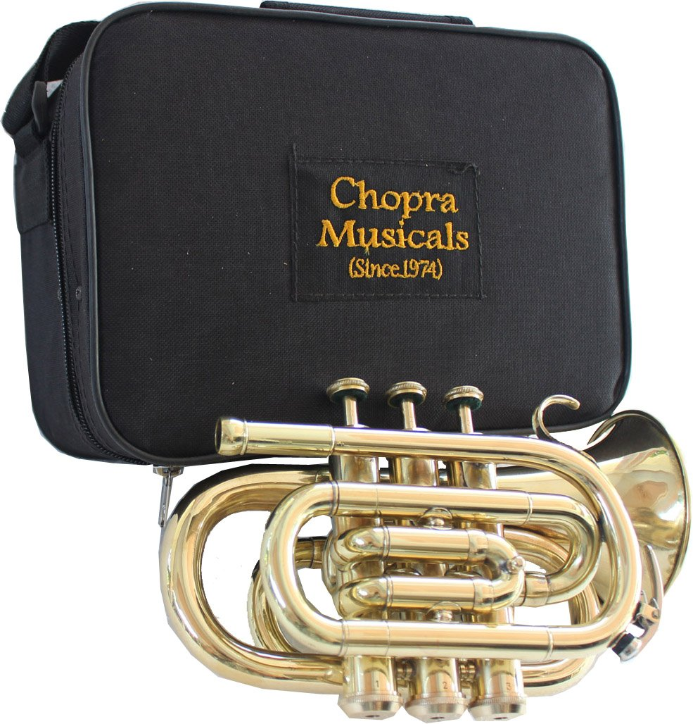 Best Pocket Trumpet 3V Pro Painted with Mouth Piece n Case